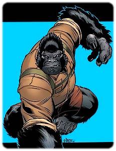 homme-gorille-l_0.jpg