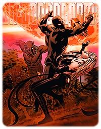 panthere-noire-la-t-challa_8.jpg