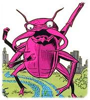 scarabee-rouge-le_1.jpg
