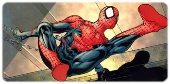 spider-man-hom_2.jpg