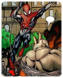 spider-man-hom_4.jpg