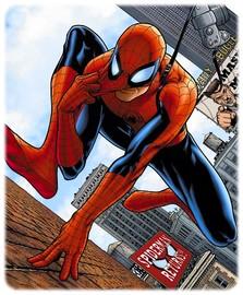 spider-man-parker_108.jpg