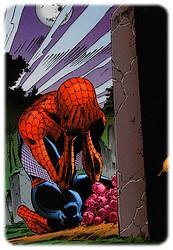 spider-man-parker_11.jpg
