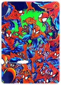 spider-man-parker_77.jpg