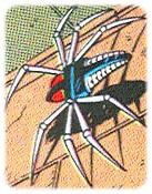 anti-araignees-les_10.jpg