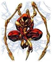 costumes-de-spider-man-les_11.jpg