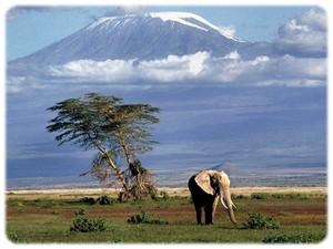 kenya-le_2.jpg