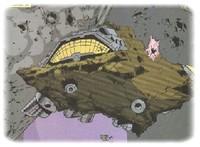 asteroide_m.jpg
